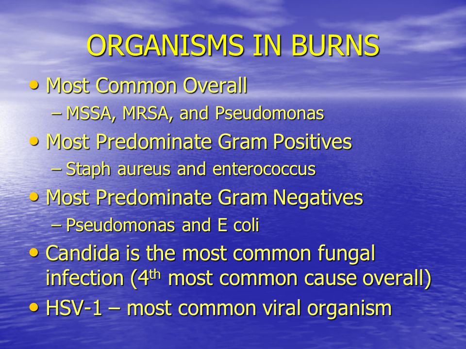 ORGANISMS IN BURNS Most Common Overall Most Predominate Gram Positives