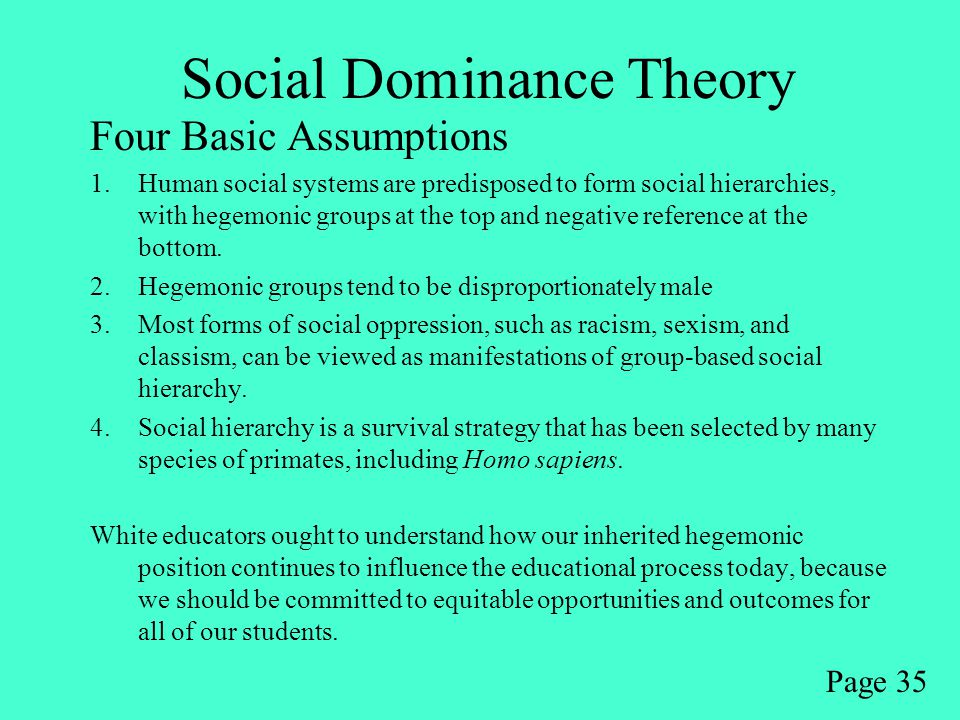 Social Dominance Theory