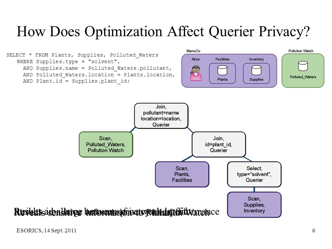 How Does Optimization Affect Querier Privacy
