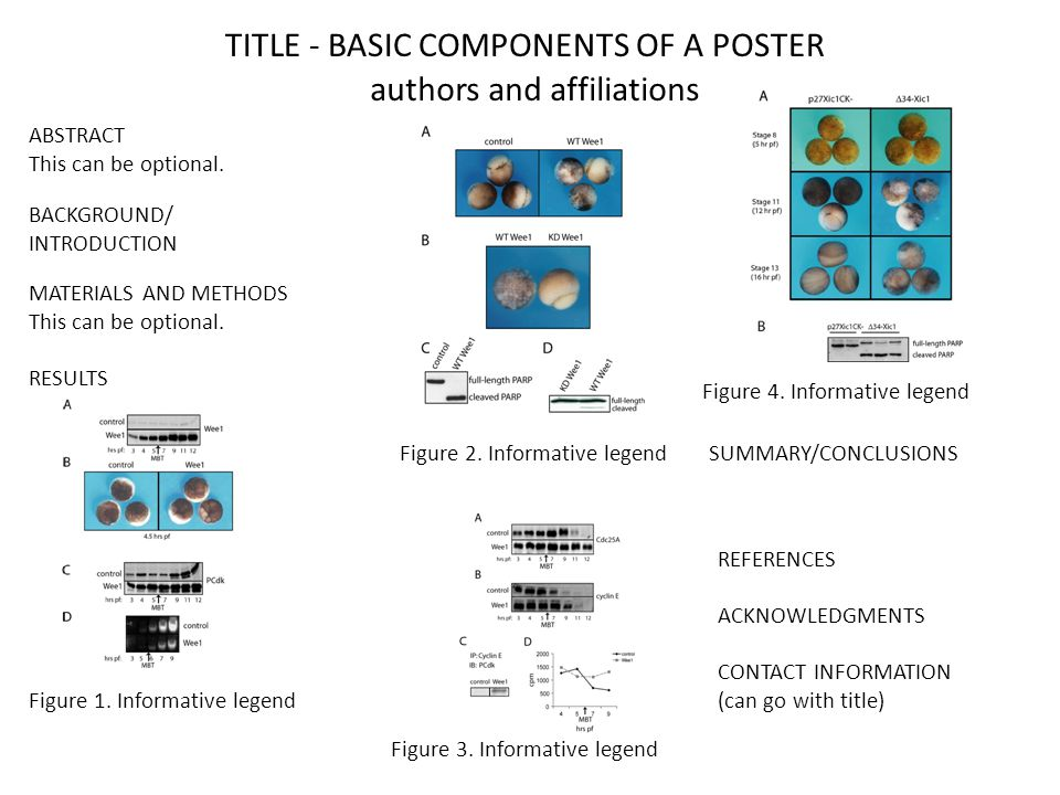 TITLE - BASIC COMPONENTS OF A POSTER authors and affiliations