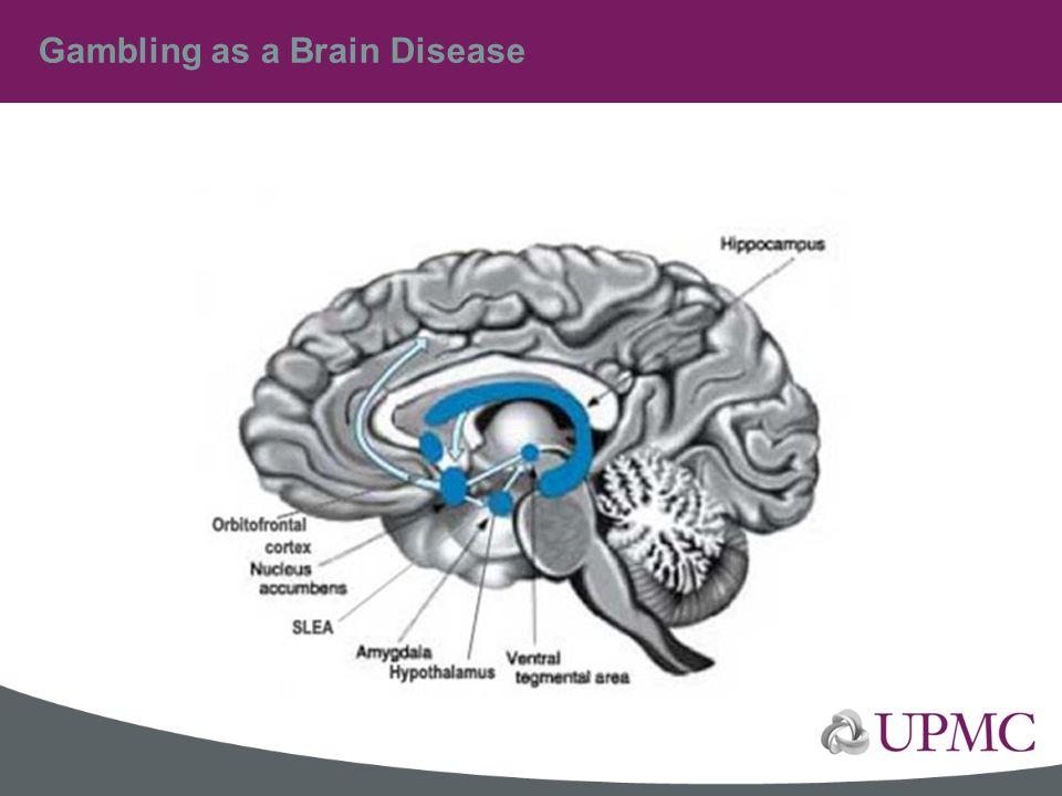 Gambling as a Brain Disease