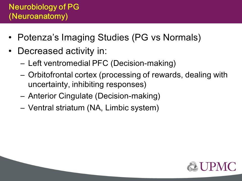Neurobiology of PG (Neuroanatomy)