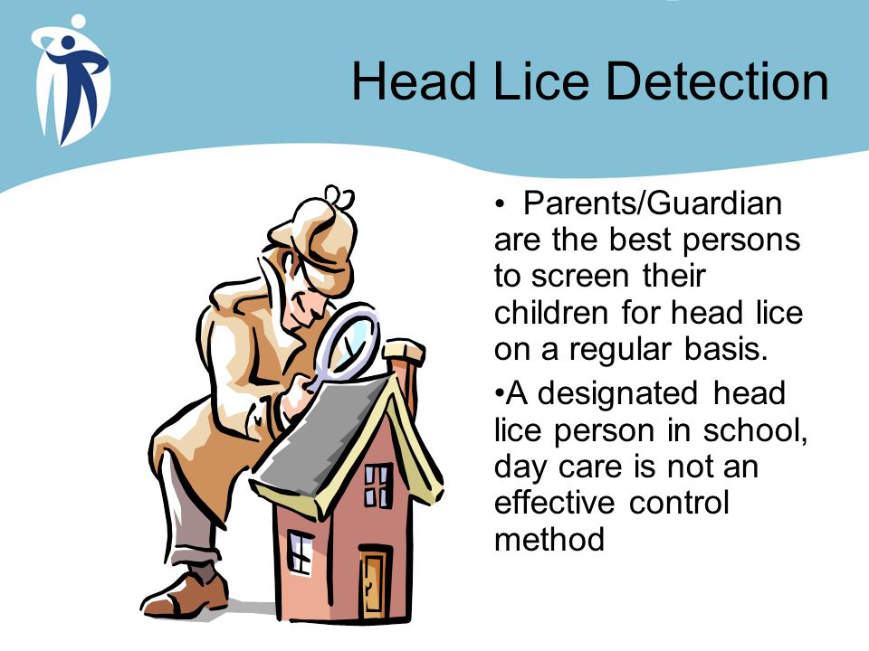 Head Lice Detection Parents/Guardian are the best persons to screen their children for head lice on a regular basis.