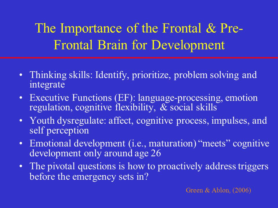 The Importance of the Frontal & Pre-Frontal Brain for Development