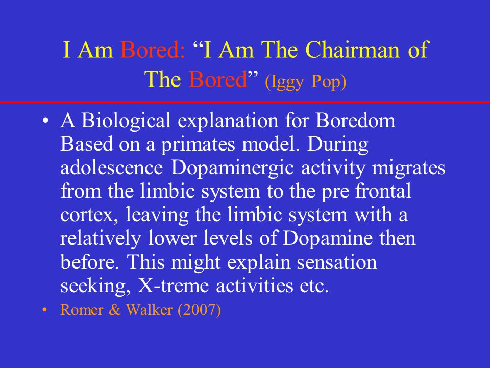 I Am Bored: I Am The Chairman of The Bored (Iggy Pop)