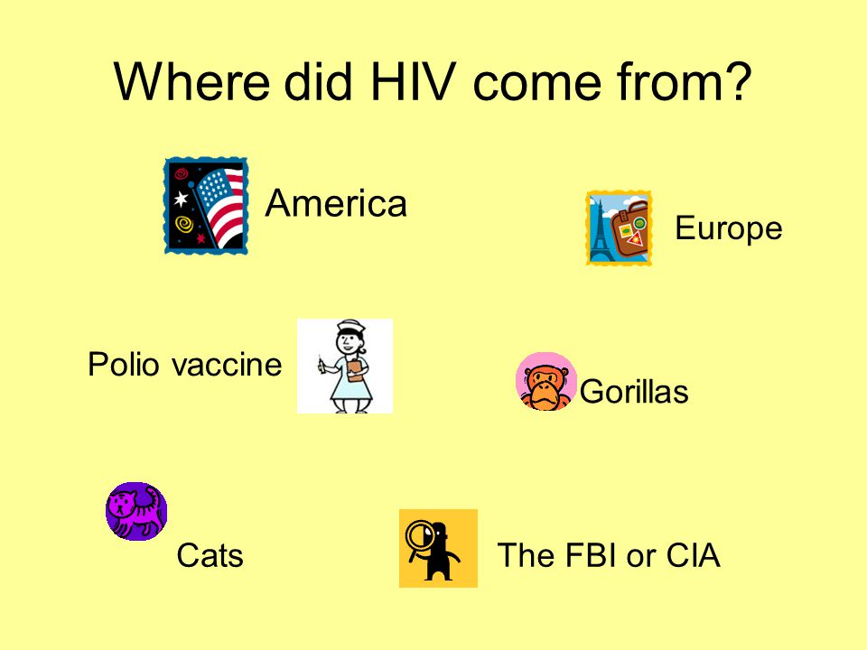 Where did HIV come from America Europe Polio vaccine Gorillas Cats