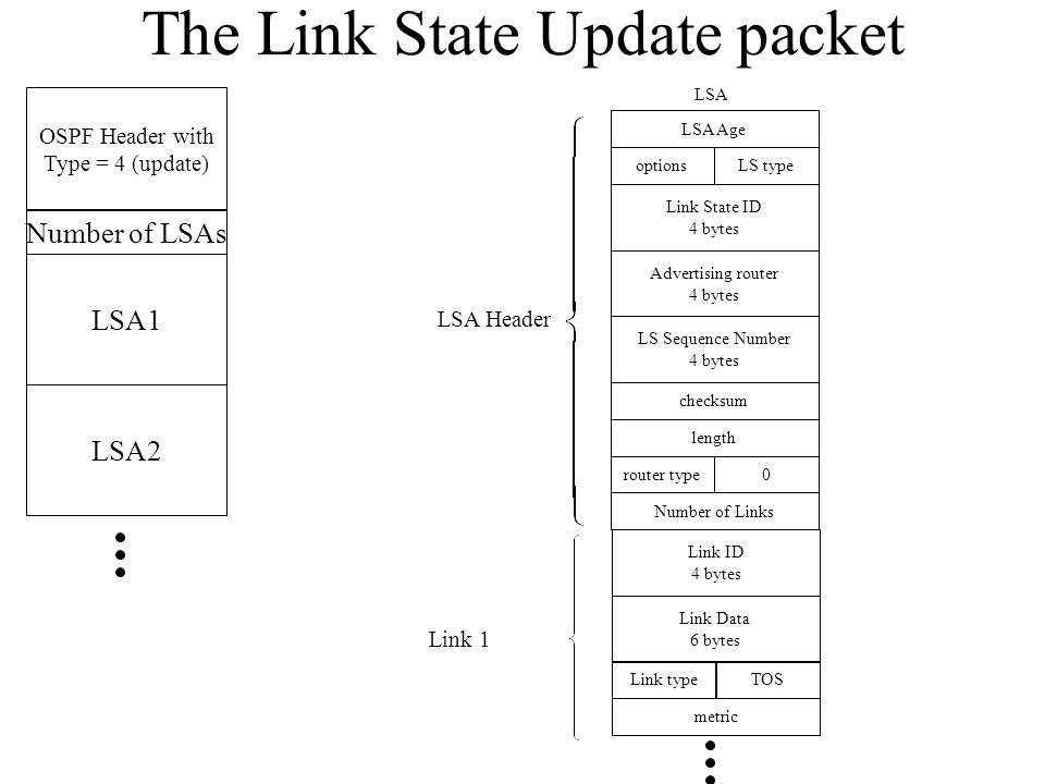 The Link State Update packet