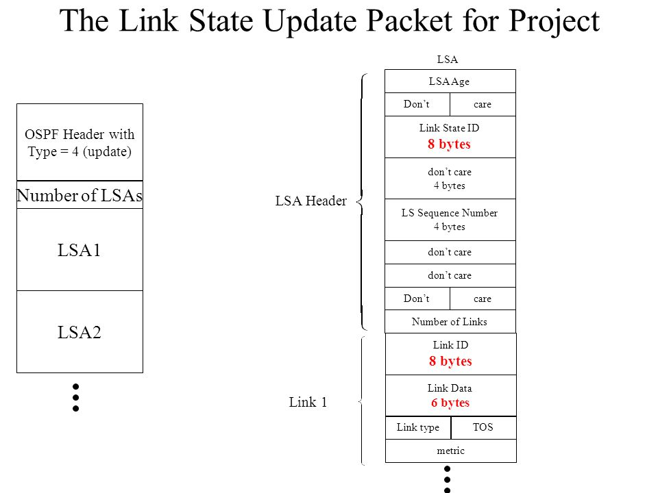 The Link State Update Packet for Project