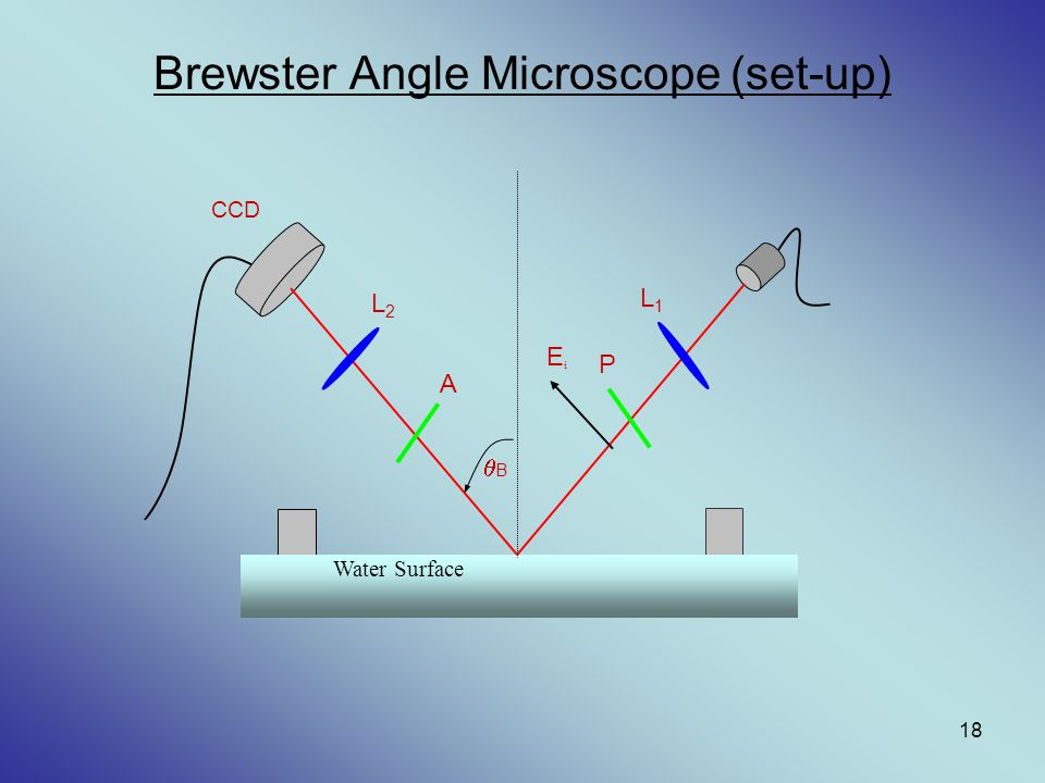 Brewster Angle Microscope (set-up)