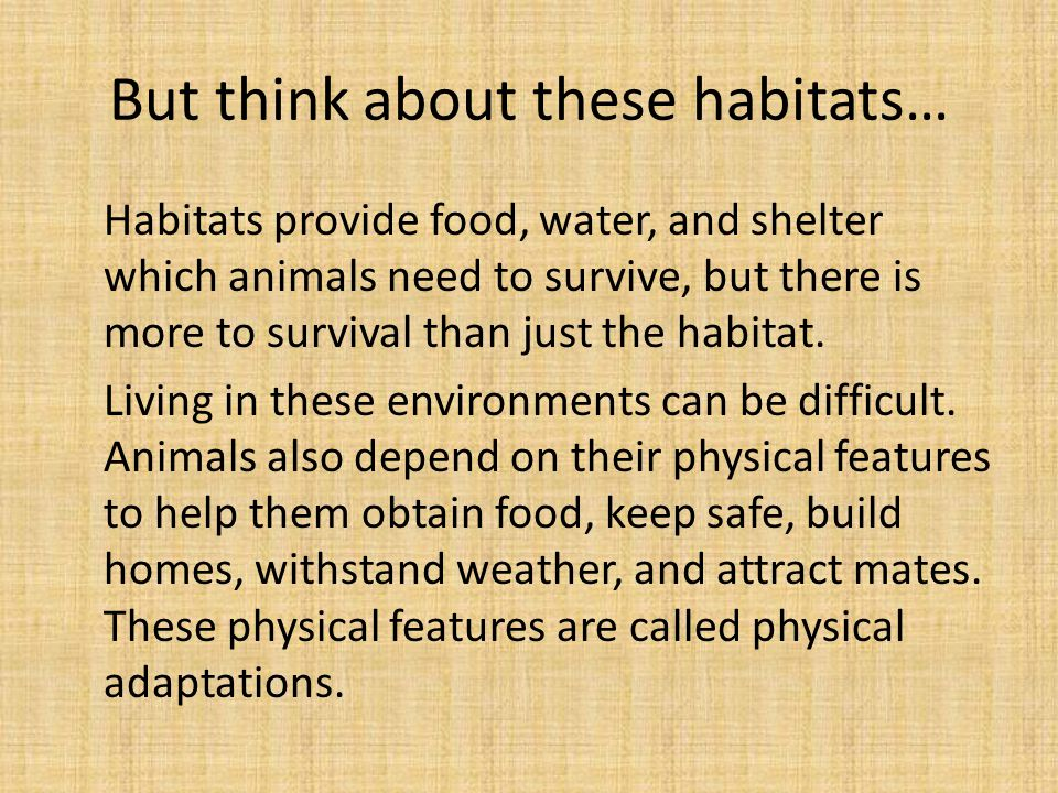But think about these habitats…