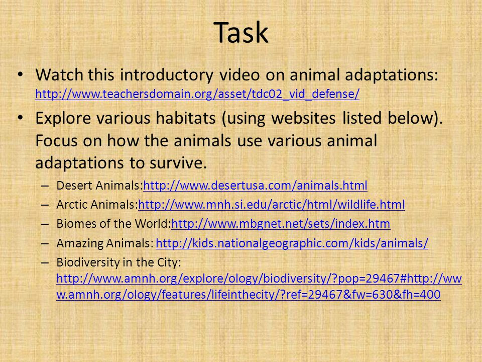 Task Watch this introductory video on animal adaptations: http://www.teachersdomain.org/asset/tdc02_vid_defense/