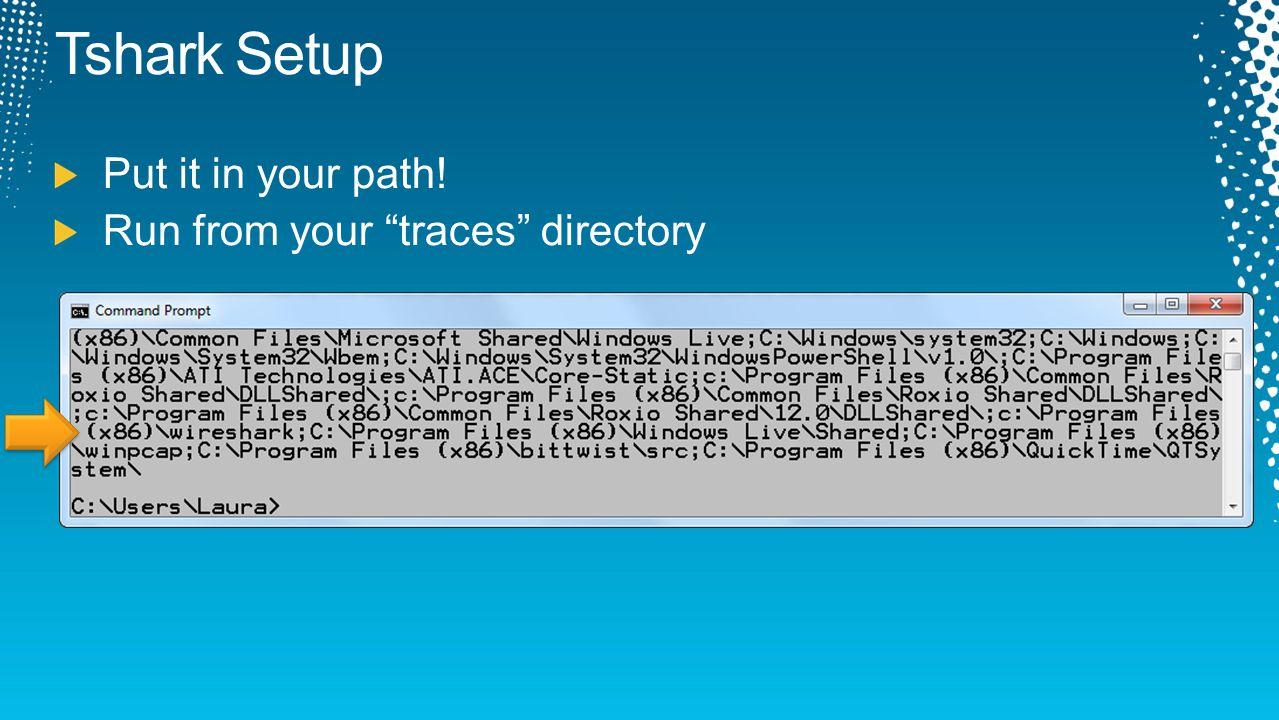 Tshark Setup Put it in your path! Run from your traces directory
