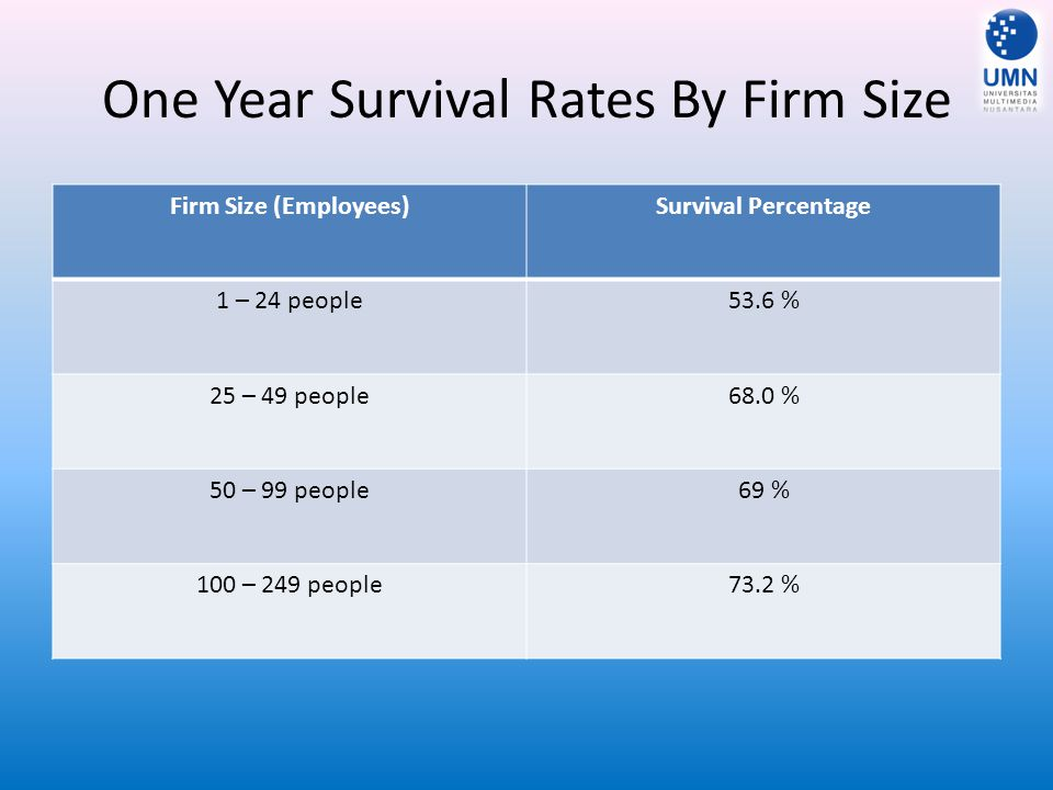One Year Survival Rates By Firm Size