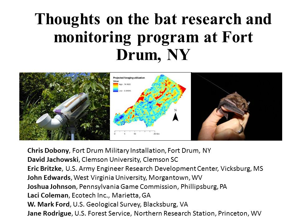 Thoughts on the bat research and monitoring program at Fort Drum, NY