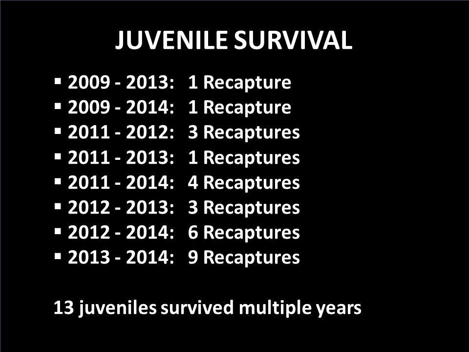 JUVENILE SURVIVAL 2009 - 2013: 1 Recapture 2009 - 2014: 1 Recapture