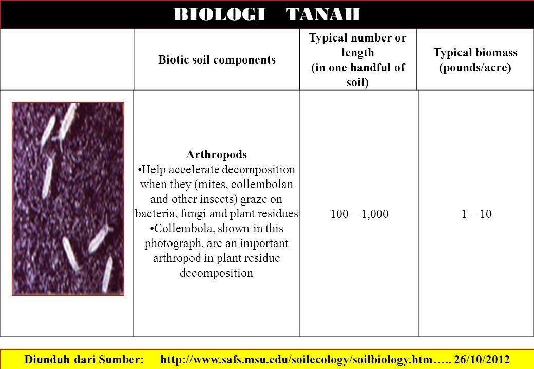 BIOLOGI TANAH Biotic soil components