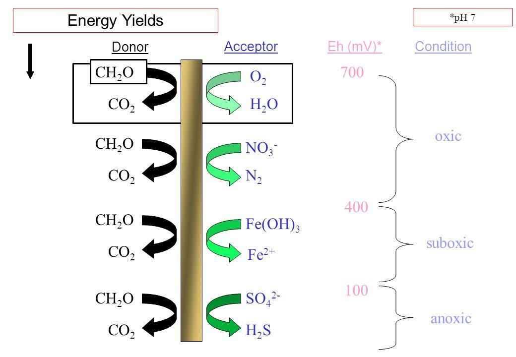 Energy Yields CH2O 700 O2 CO2 H2O oxic CH2O NO3- CO2 N2 400 CH2O