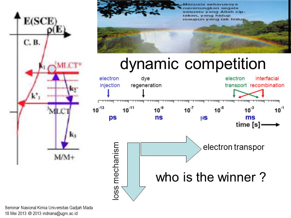 dynamic competition who is the winner electron transpor
