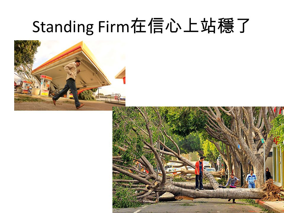 Standing Firm在信心上站穩了