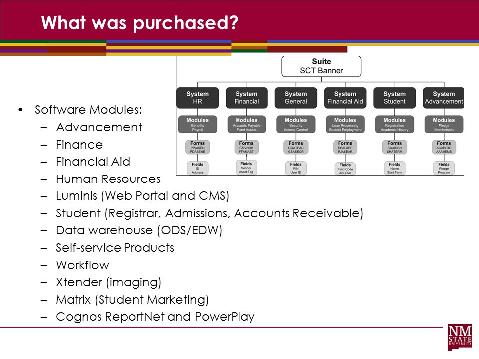 What was purchased Software Modules: Advancement Finance