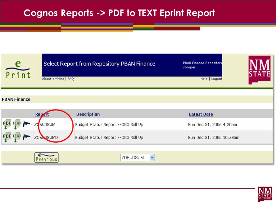 Cognos Reports -> PDF to TEXT Eprint Report