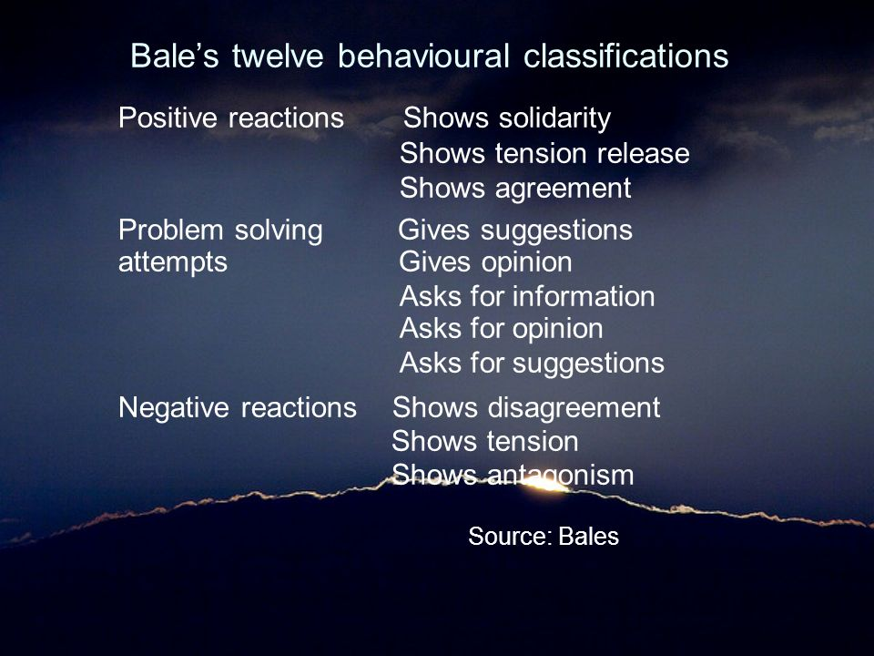 Bale's twelve behavioural classifications