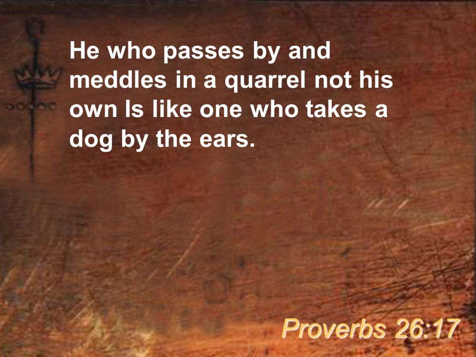 He who passes by and meddles in a quarrel not his own Is like one who takes a dog by the ears.