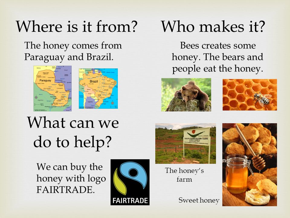 Bees creates some honey. The bears and people eat the honey.