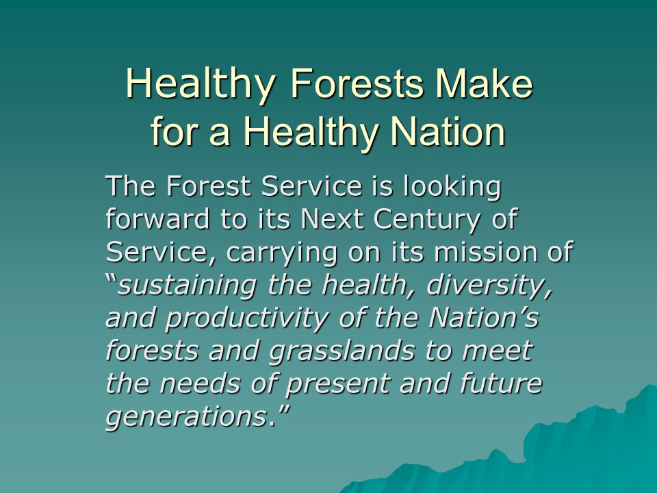Healthy Forests Make for a Healthy Nation