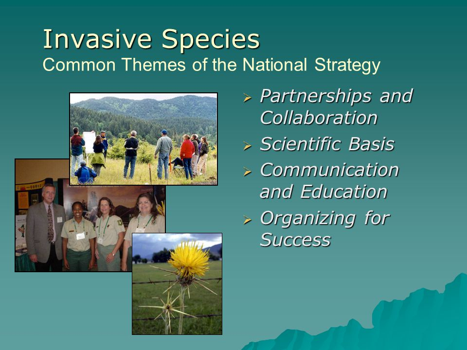 Invasive Species Common Themes of the National Strategy