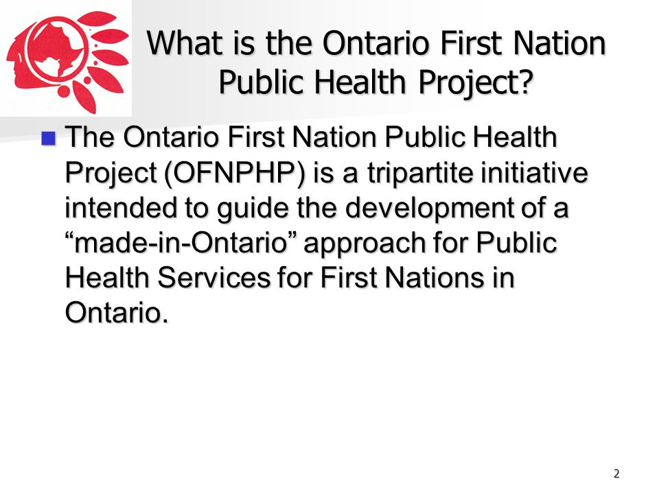 What is the Ontario First Nation Public Health Project