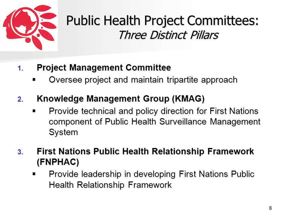 Public Health Project Committees: Three Distinct Pillars