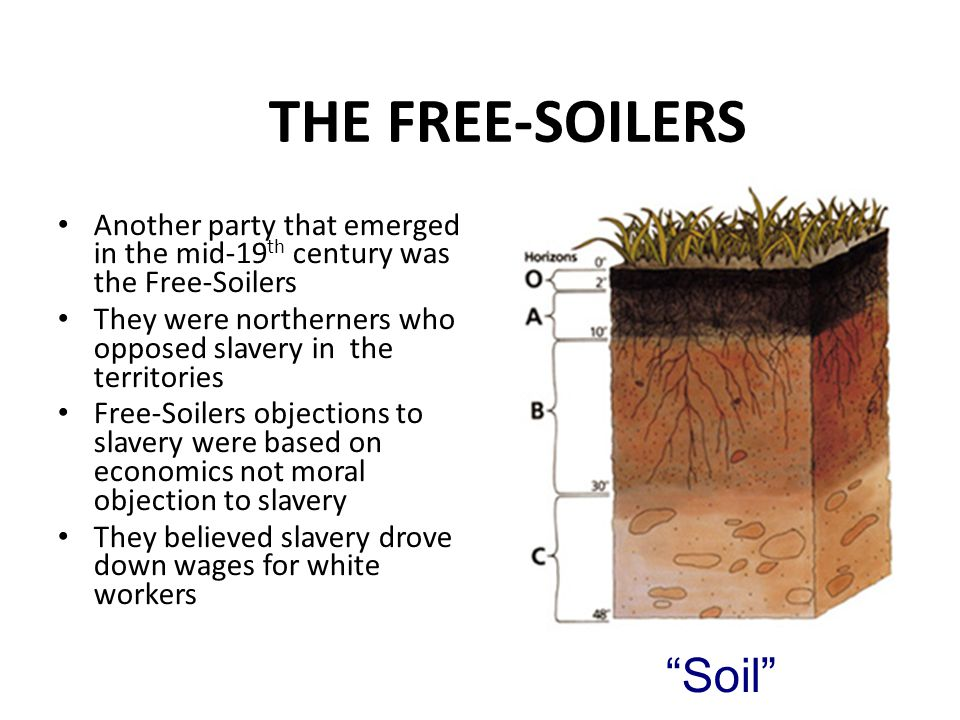 THE FREE-SOILERS Soil