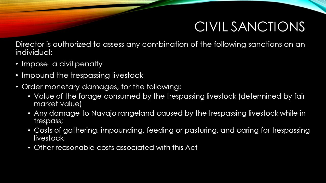 Civil Sanctions Director is authorized to assess any combination of the following sanctions on an individual: