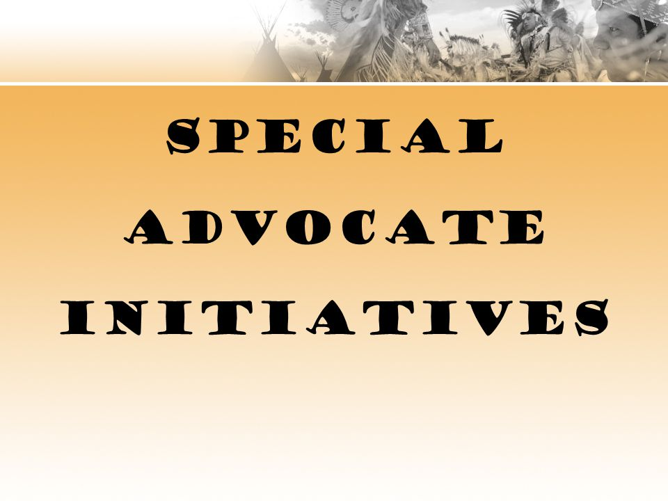 SPECIAL ADVOCATE INITIATIVES