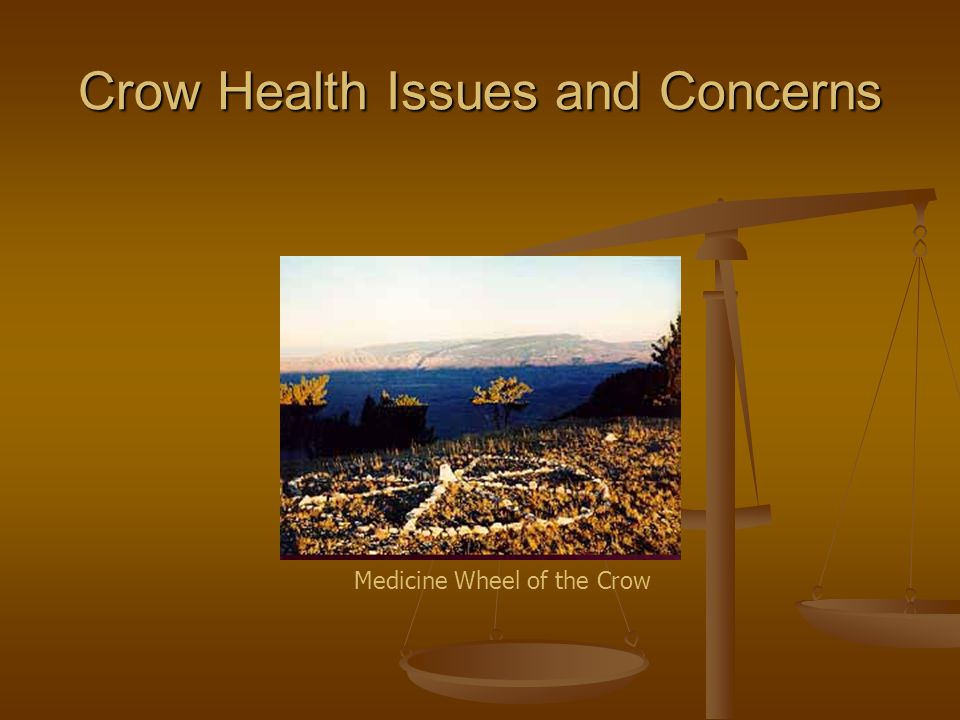 Crow Health Issues and Concerns