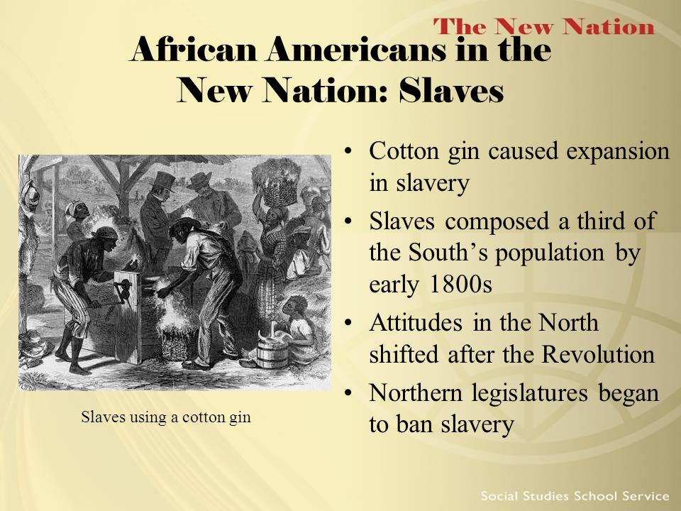 African Americans in the New Nation: Slaves