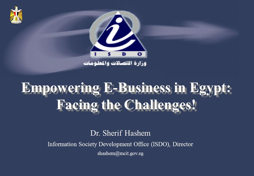 Empowering E-Business in Egypt: Facing the Challenges!