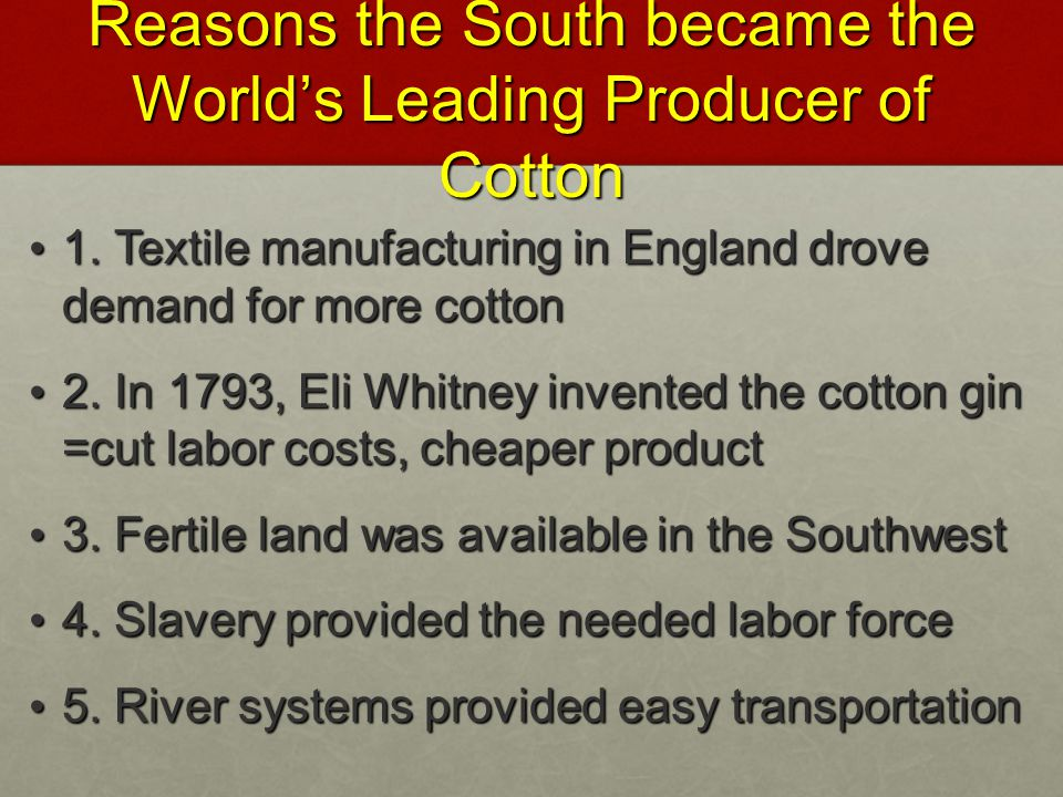 Reasons the South became the World's Leading Producer of Cotton