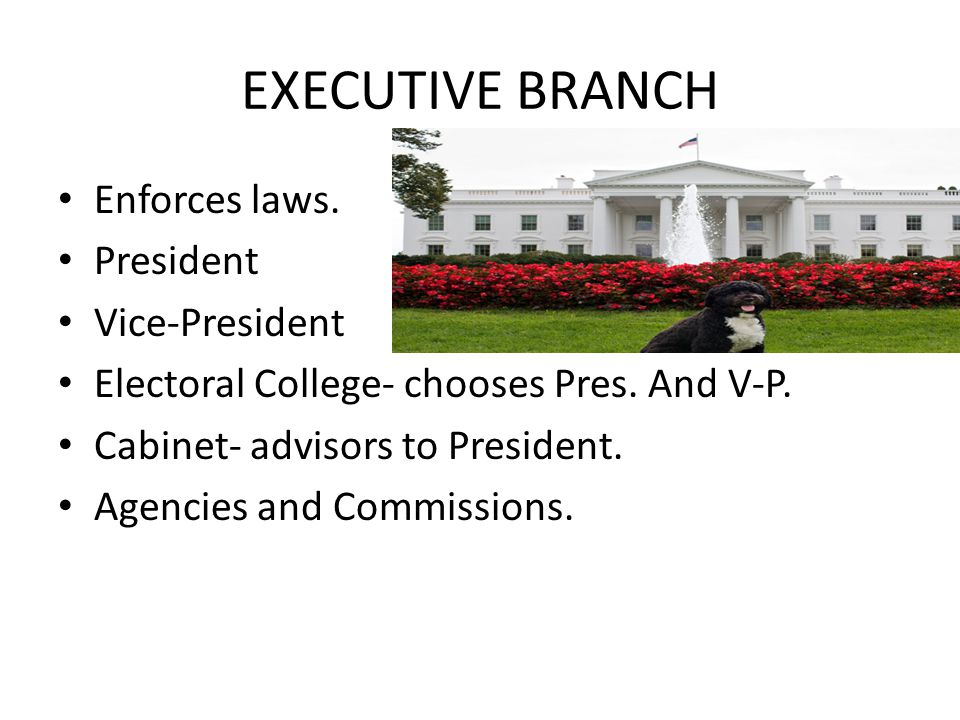 EXECUTIVE BRANCH Enforces laws. President Vice-President