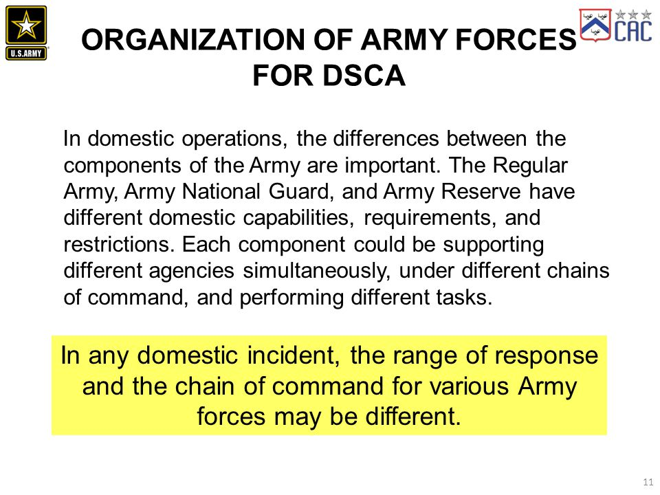 ORGANIZATION OF ARMY FORCES for DSCA