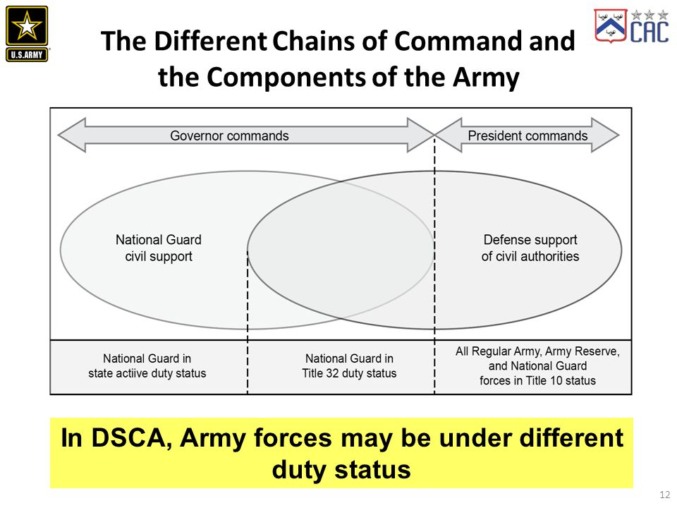 The Different Chains of Command and the Components of the Army