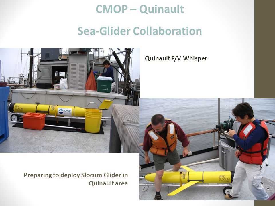 Sea-Glider Collaboration