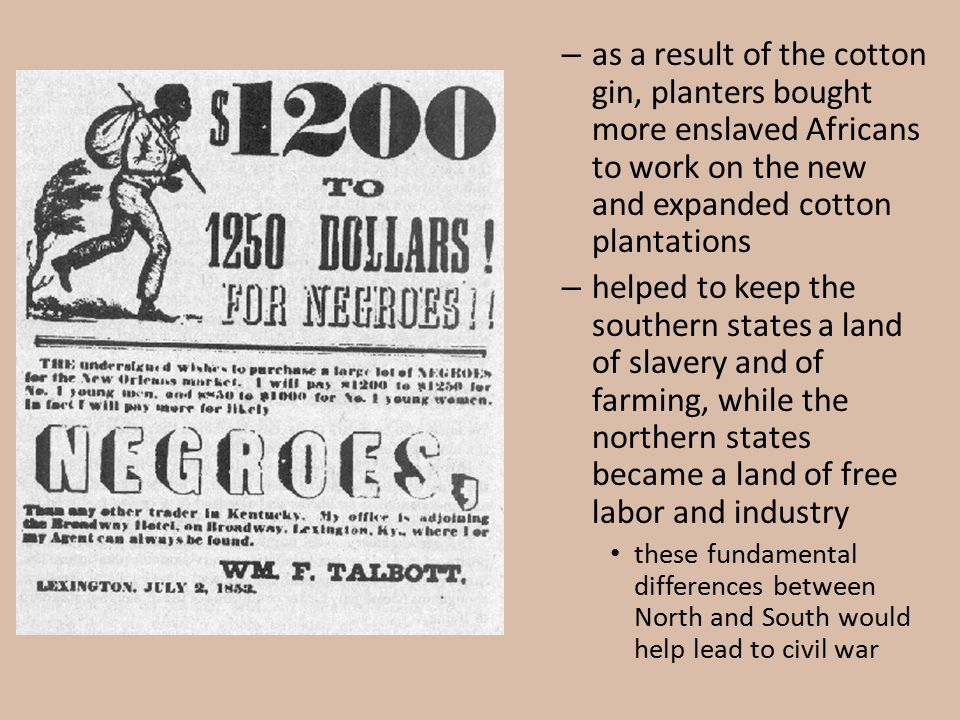 as a result of the cotton gin, planters bought more enslaved Africans to work on the new and expanded cotton plantations
