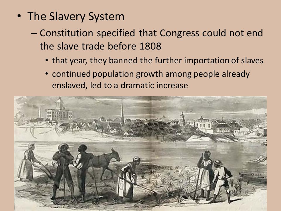 The Slavery System Constitution specified that Congress could not end the slave trade before 1808.