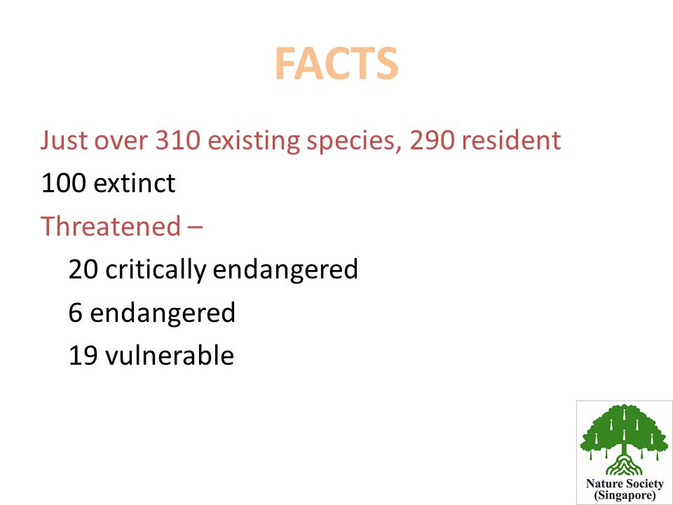 FACTS Just over 310 existing species, 290 resident 100 extinct