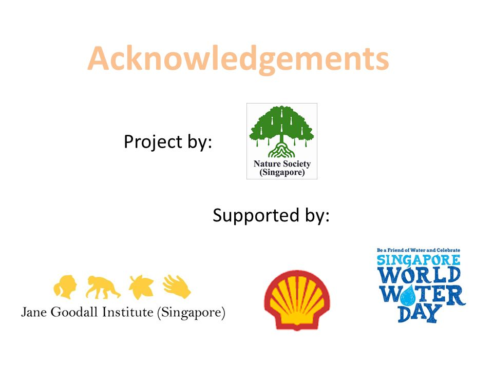 Acknowledgements Project by: Supported by: