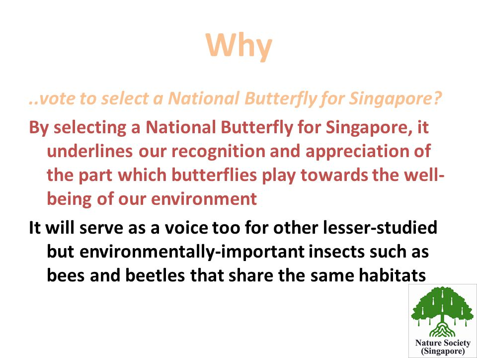 Why ..vote to select a National Butterfly for Singapore