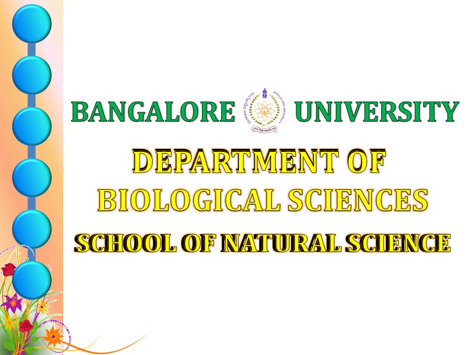 SCHOOL OF NATURAL SCIENCE