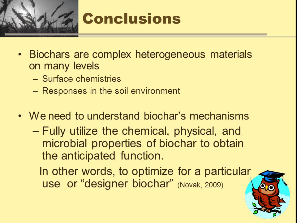 Conclusions Biochars are complex heterogeneous materials on many levels. Surface chemistries. Responses in the soil environment.